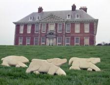 ten-jolly-dogs-bath-limestone-35cm-x-50cm