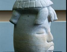tortoise-memories-ancaster-limestone-30cm-x-50cm